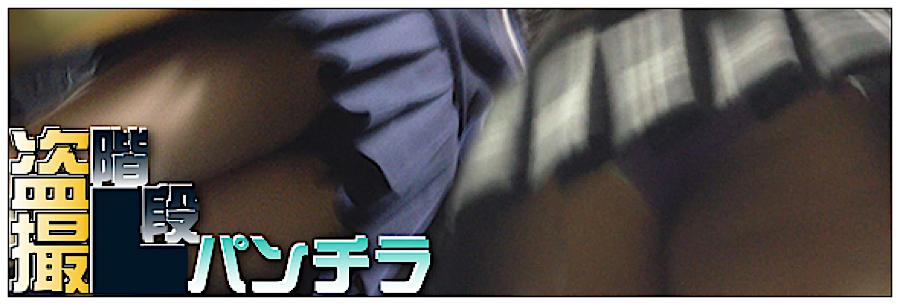 セックスアダルト動画|追い撮り!!階段パンチラ|丸見えまんこ