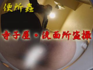 セックスアダルト動画|寺子屋・洗面所盗SATU|おまんこパイパン