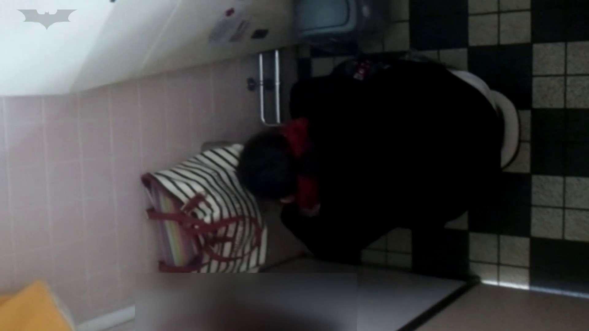 セックスアダルト動画|化粧室絵巻 駅舎編 VOL.17 後ろ姿美人のおねぇたん!!|怪盗ジョーカー