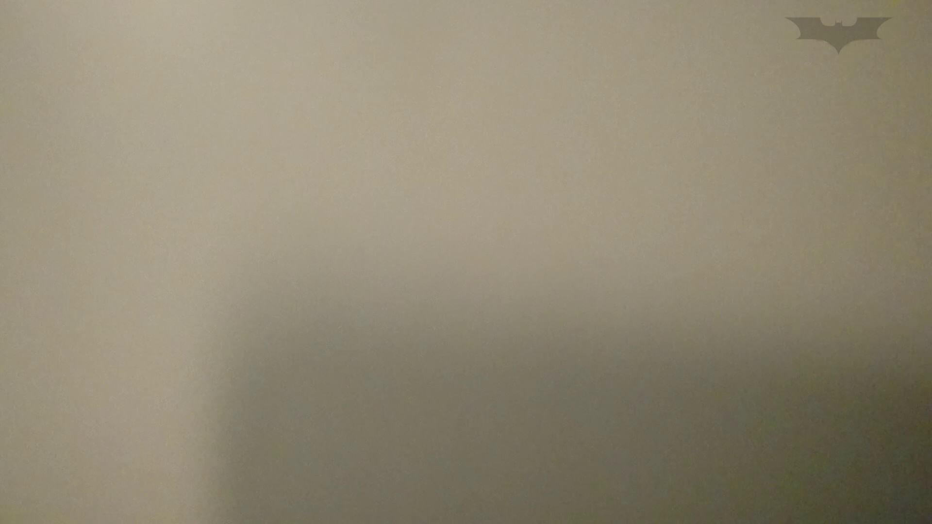 セックスアダルト動画|化粧室絵巻 ショッピングモール編 VOL.13|怪盗ジョーカー