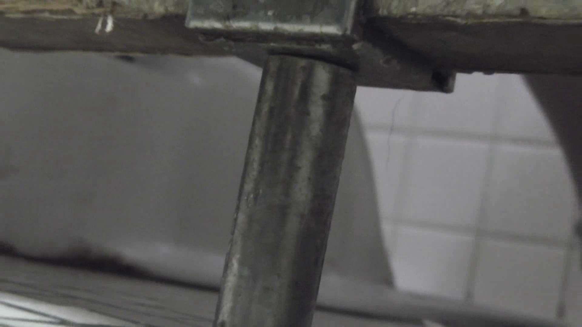 セックスアダルト動画|洗面所特攻隊vol.014 出れなくなって絶対絶命|怪盗ジョーカー