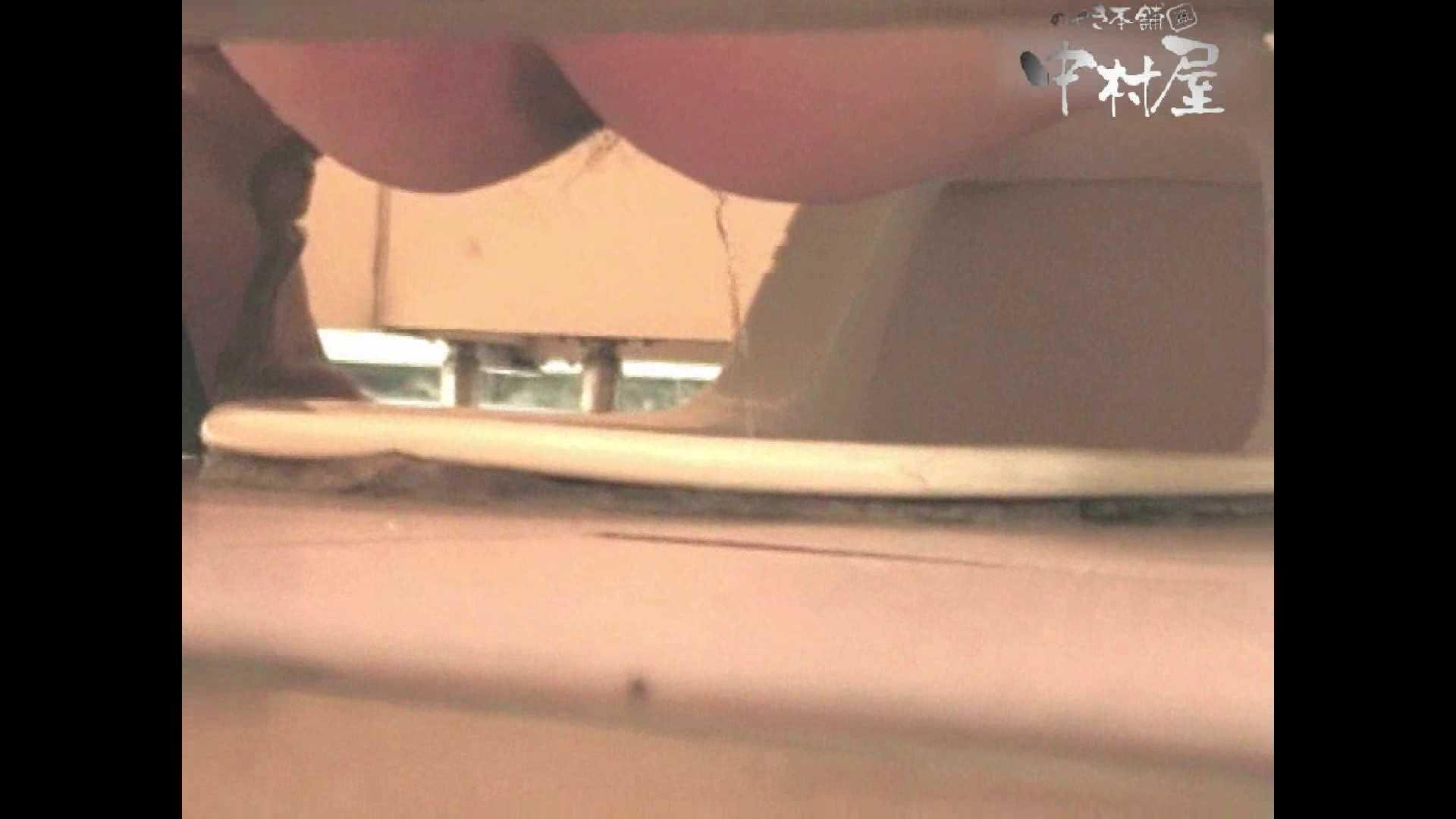 セックスアダルト動画|岩手県在住盗撮師盗撮記録vol.07|のぞき本舗 中村屋