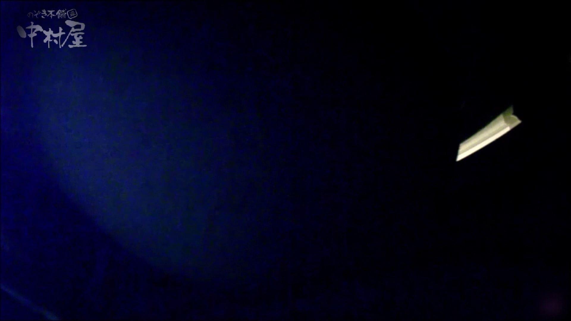 セックスアダルト動画|女子トイレ盗撮~某ファミレス編~vol.16|のぞき本舗 中村屋