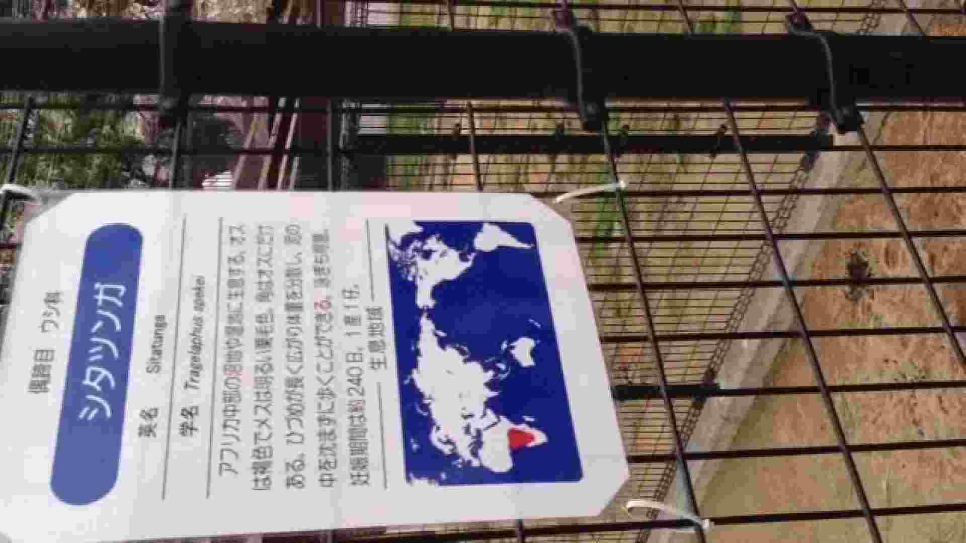 23(19日目)桜を見ながらお散歩 オマンコ全開 戯れ無修正画像 61PIX 15