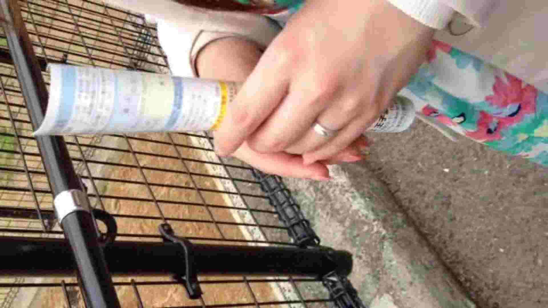 23(19日目)桜を見ながらお散歩 盗撮  61PIX 24