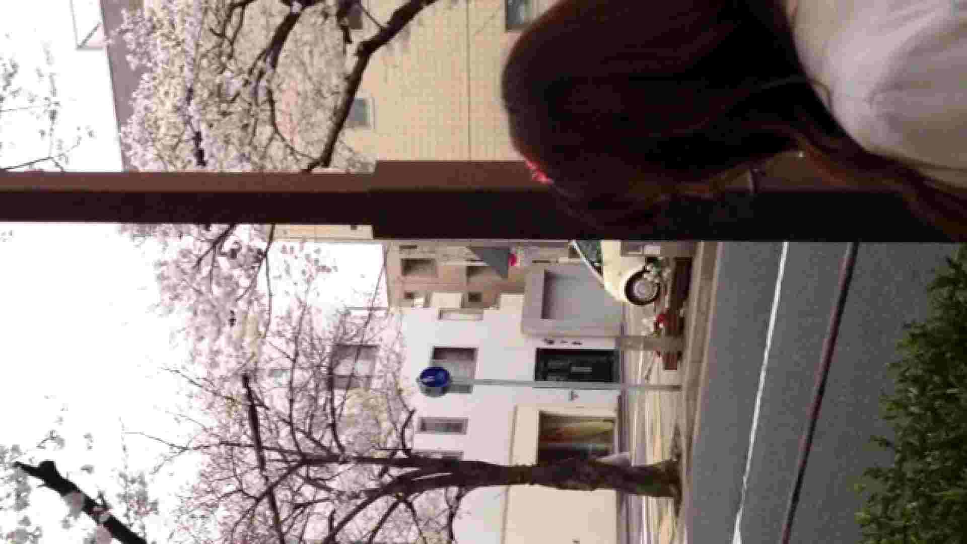 23(19日目)桜を見ながらお散歩 覗き すけべAV動画紹介 61PIX 34
