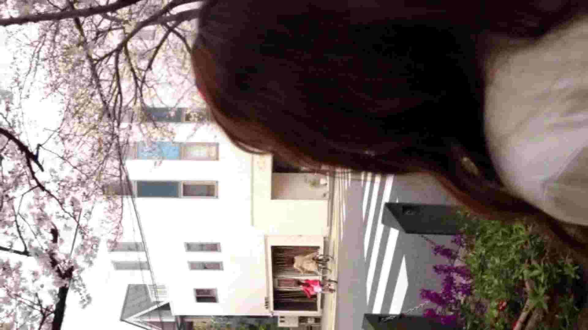 23(19日目)桜を見ながらお散歩 盗撮  61PIX 36