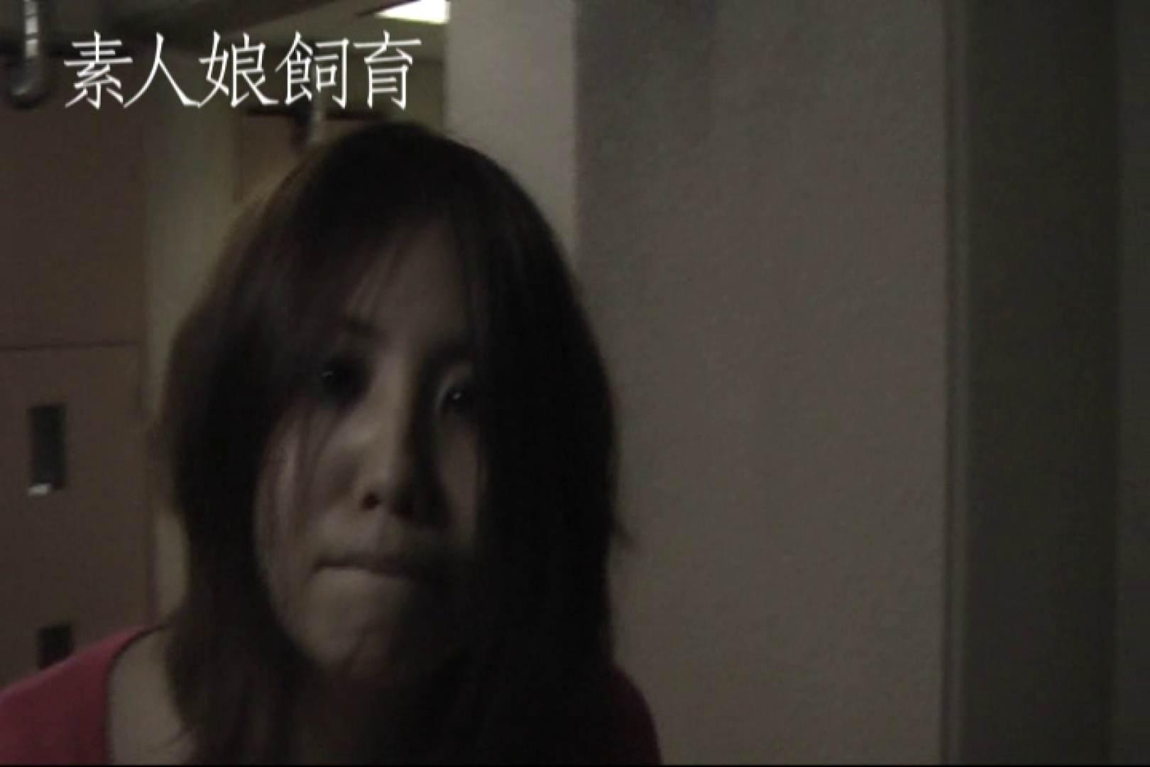 素人嬢飼育~お前の餌は他人棒~野外全裸オナニ- 素人流出 のぞき動画画像 74PIX 2