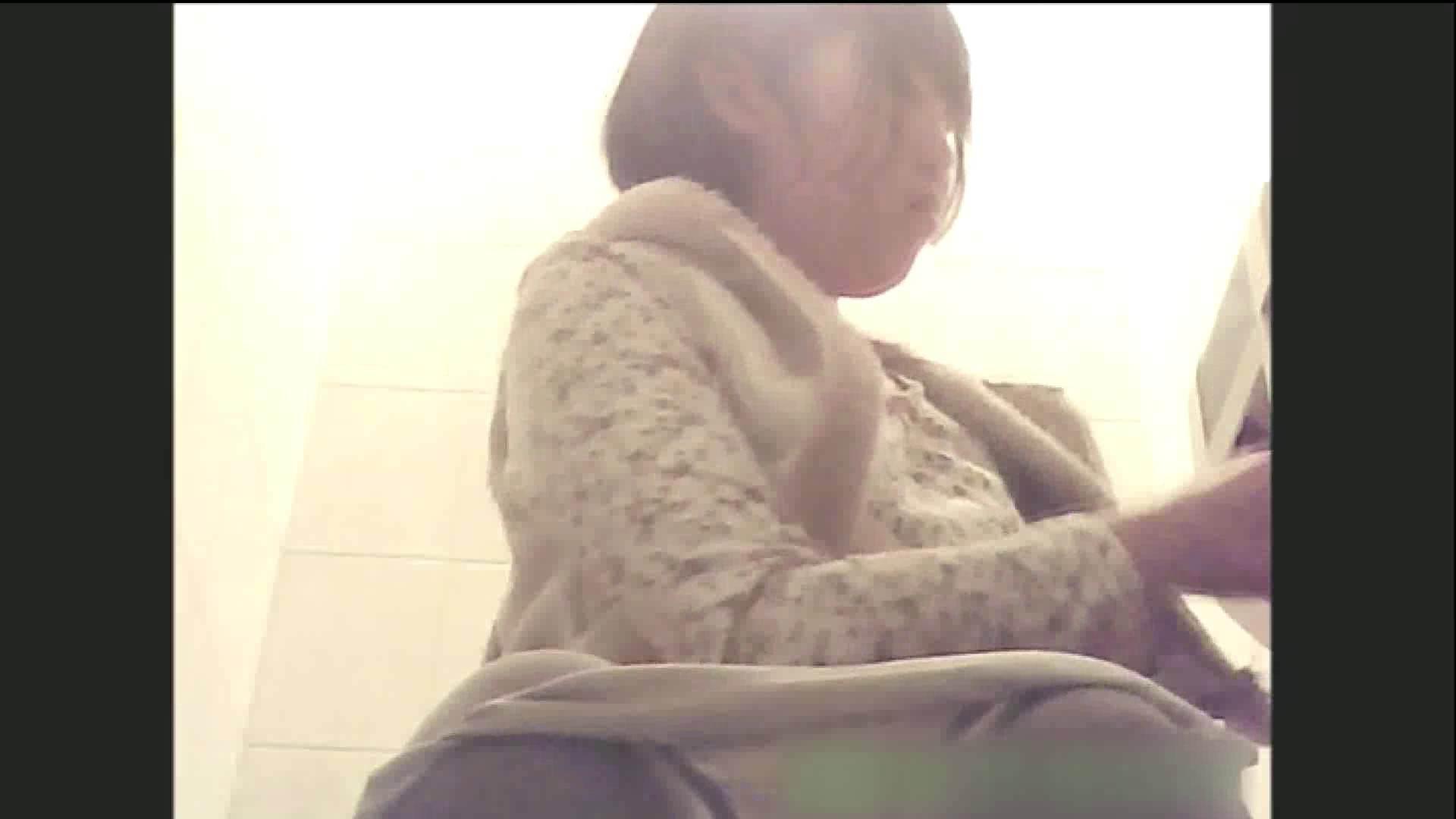実録!!綺麗なお姉さんのトイレ事情・・・。vol.6 OLヌード天国  66PIX 54