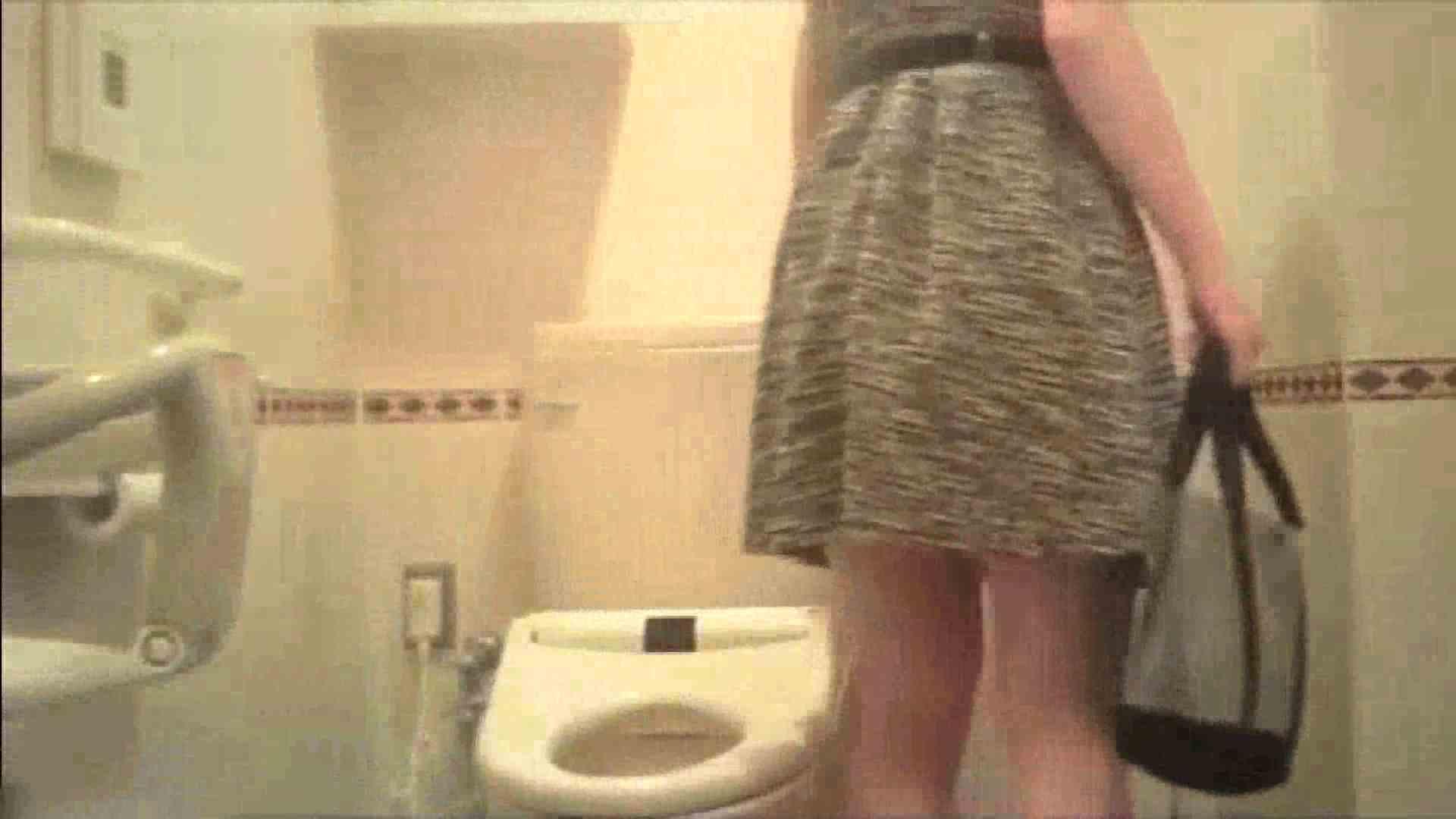 実録!!綺麗なお姉さんのトイレ事情・・・。vol.17 お姉さんのエッチ | うんこ  80PIX 16