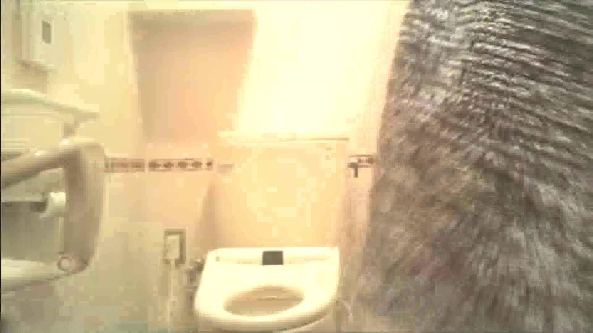 実録!!綺麗なお姉さんのトイレ事情・・・。vol.17 OLヌード天国 濡れ場動画紹介 80PIX 71