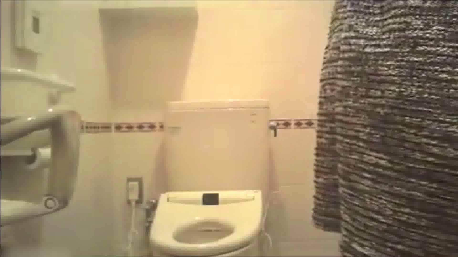 実録!!綺麗なお姉さんのトイレ事情・・・。vol.17 お姉さんのエッチ  80PIX 72
