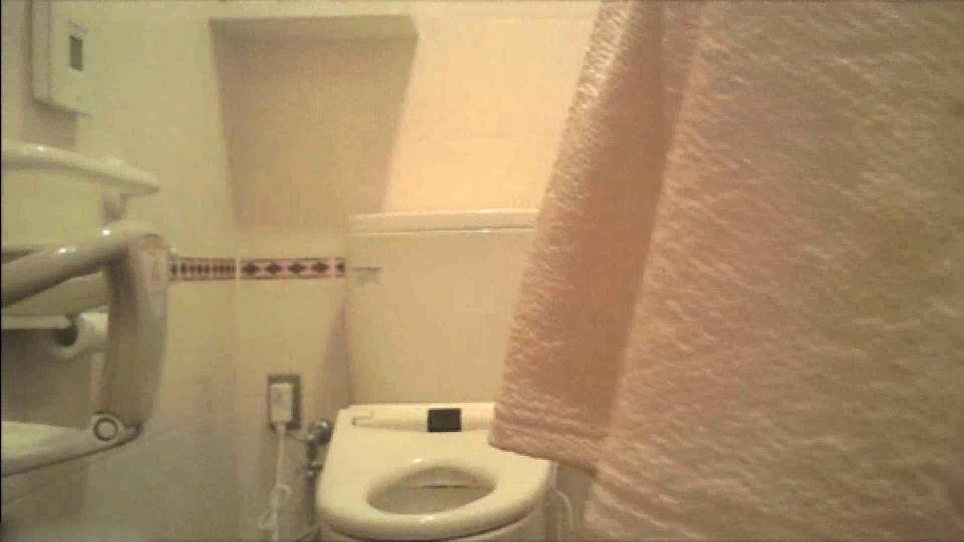 実録!!綺麗なお姉さんのトイレ事情・・・。vol.18 お姉さんのエッチ | OLヌード天国  104PIX 69