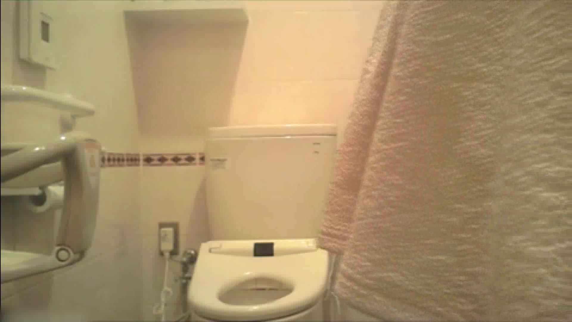 実録!!綺麗なお姉さんのトイレ事情・・・。vol.18 お姉さんのエッチ  104PIX 70