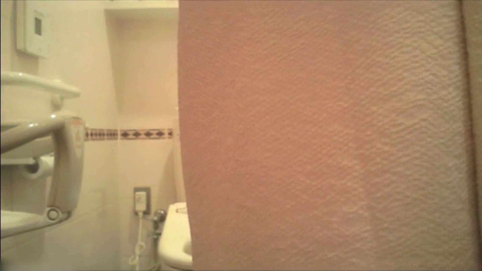 実録!!綺麗なお姉さんのトイレ事情・・・。vol.18 お姉さんのエッチ | OLヌード天国  104PIX 81