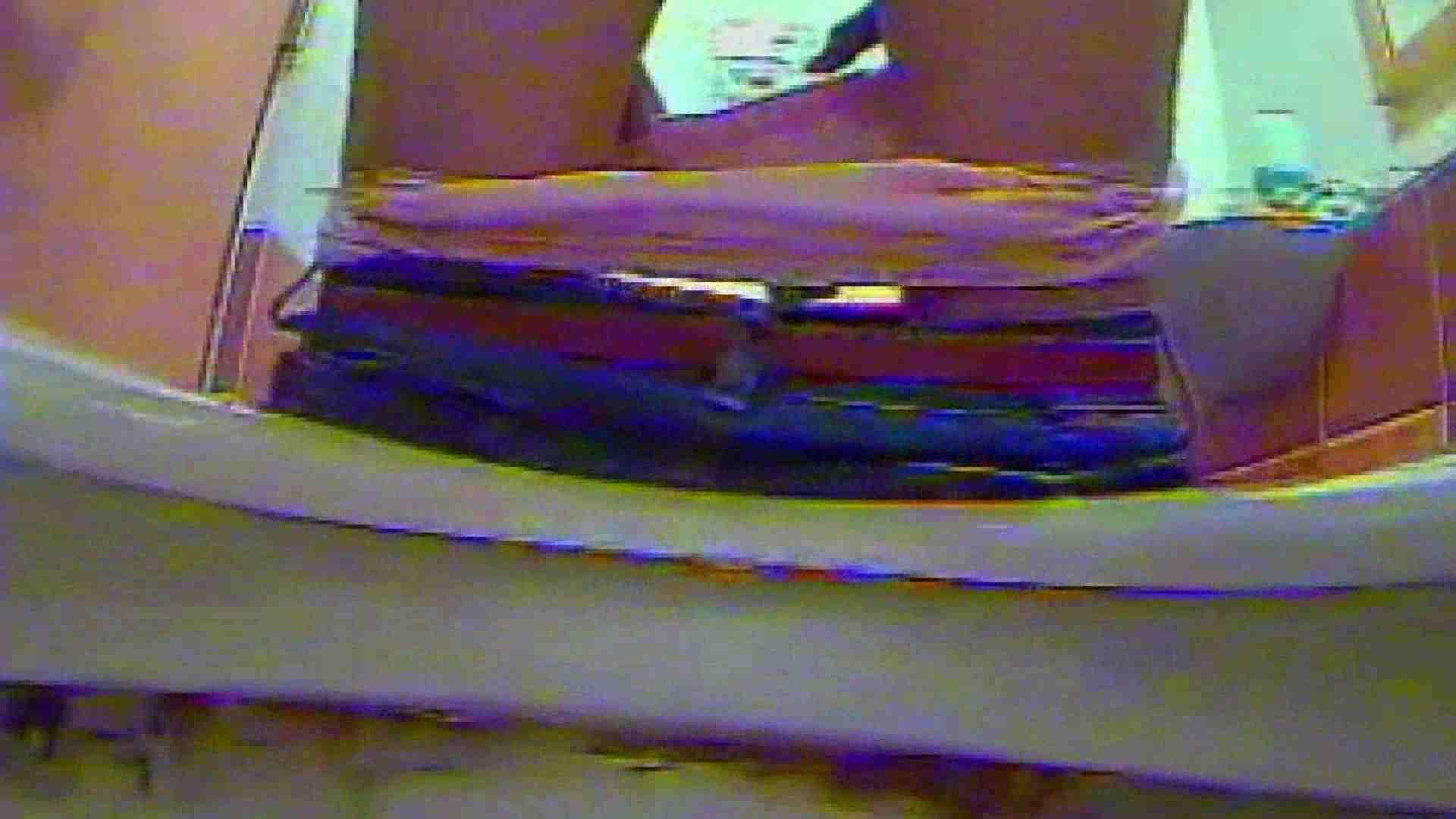 キレカワ女子大生の秘密の洗面所!Vol.012 バックショット 隠し撮りオマンコ動画紹介 102PIX 87