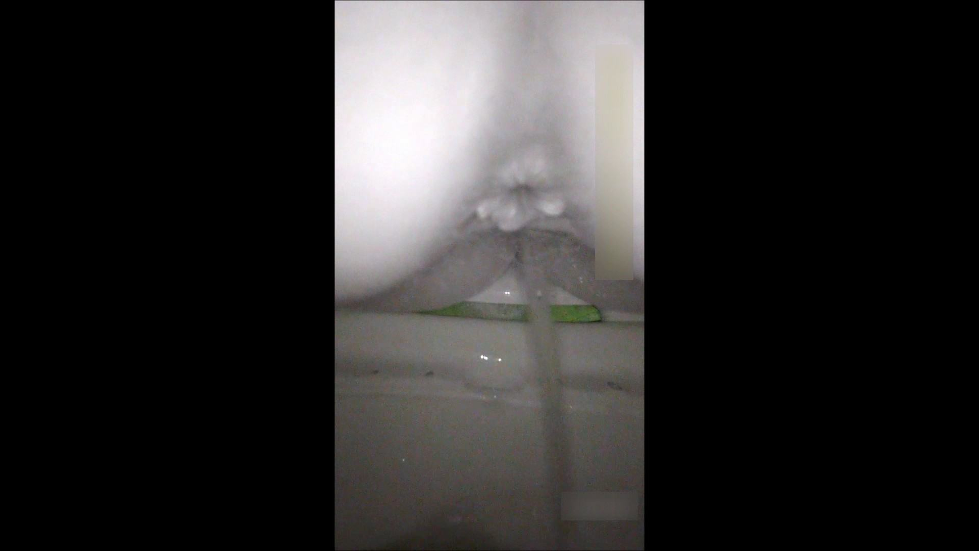 キレカワ女子大生の秘密の洗面所!Vol.050 バックショット AV動画キャプチャ 74PIX 22