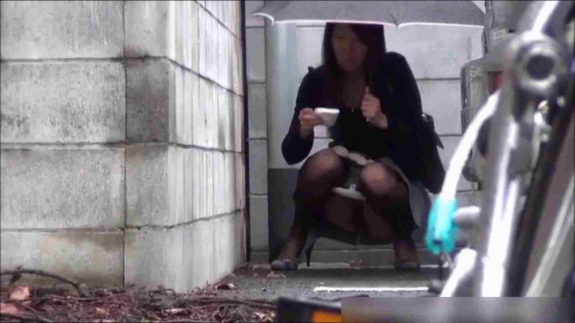 洗面所盗撮~隣の美人お姉さんVol.11 お姉さんのエッチ おまんこ動画流出 102PIX 34