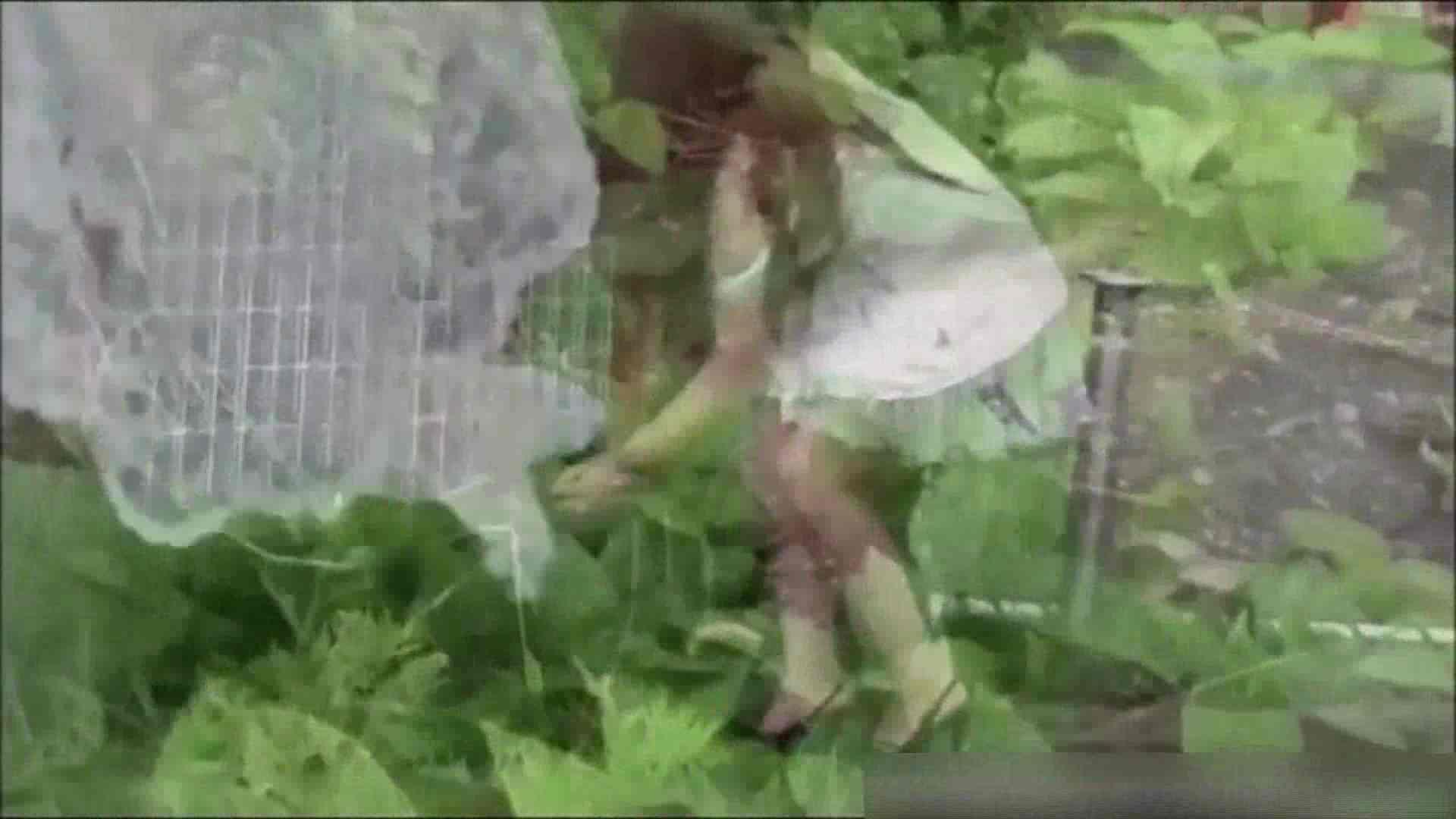 洗面所盗撮~隣の美人お姉さんVol.11 美女ヌード天国 ワレメ無修正動画無料 102PIX 61