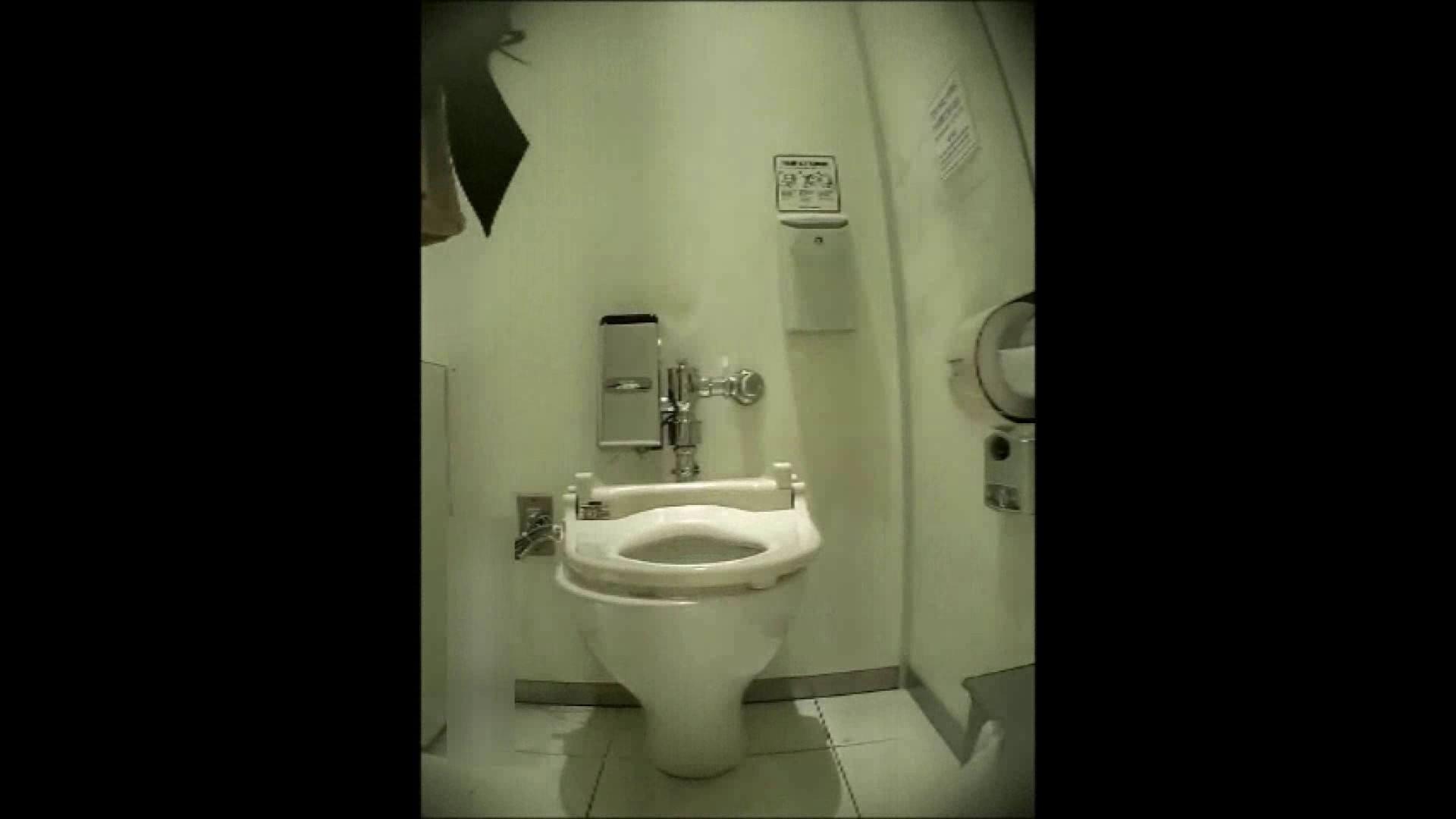 洗面所盗撮~隣の美人お姉さんVol.14 洗面所 オマンコ動画キャプチャ 102PIX 32