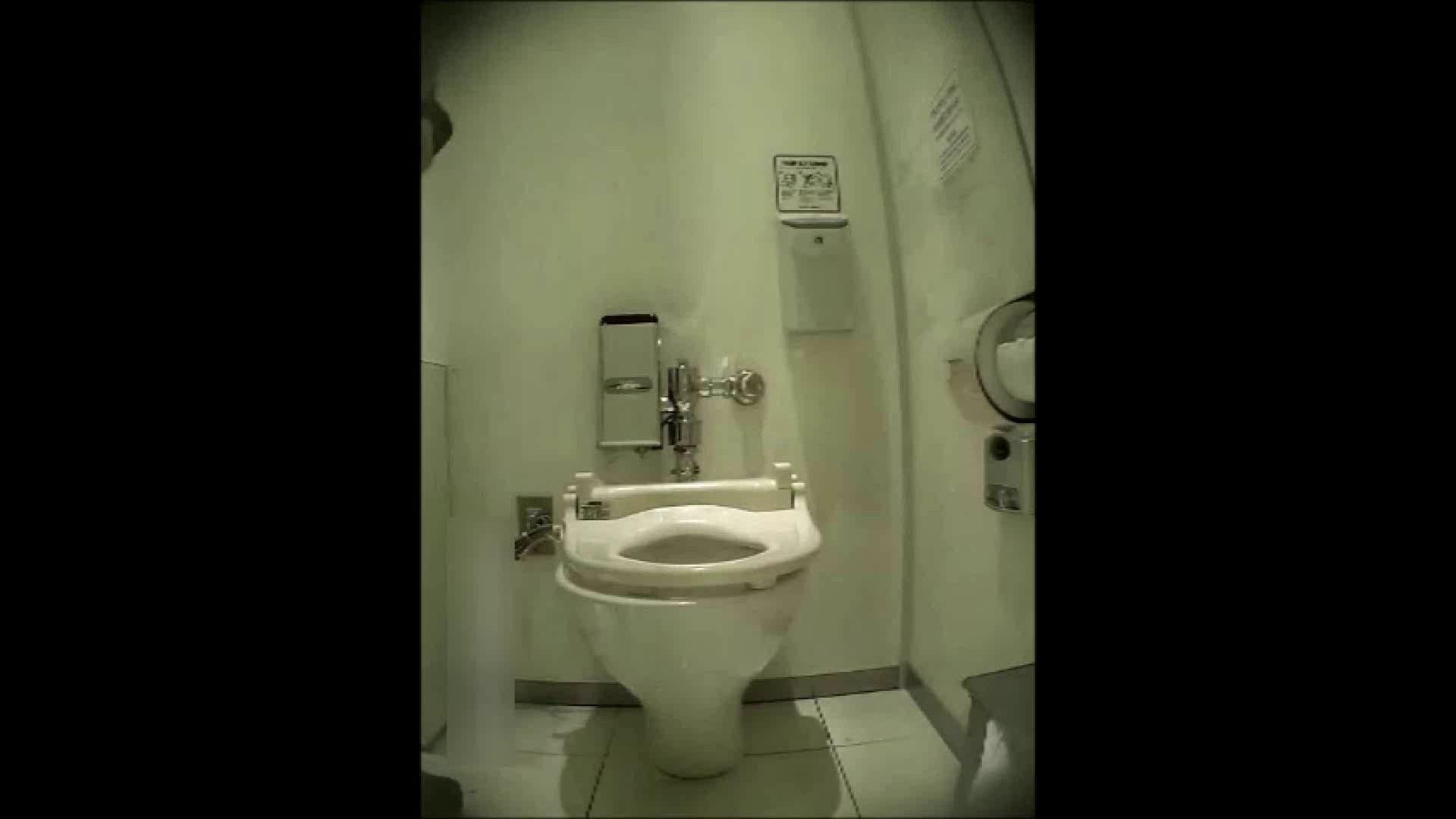 洗面所盗撮~隣の美人お姉さんVol.14 洗面所 オマンコ動画キャプチャ 102PIX 102