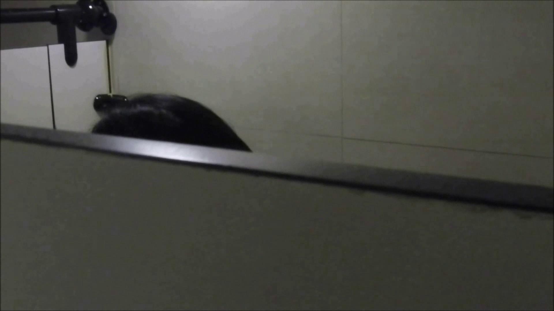 洗面所盗撮~隣の美人お姉さんVol.18 お姉さんのエッチ  100PIX 21