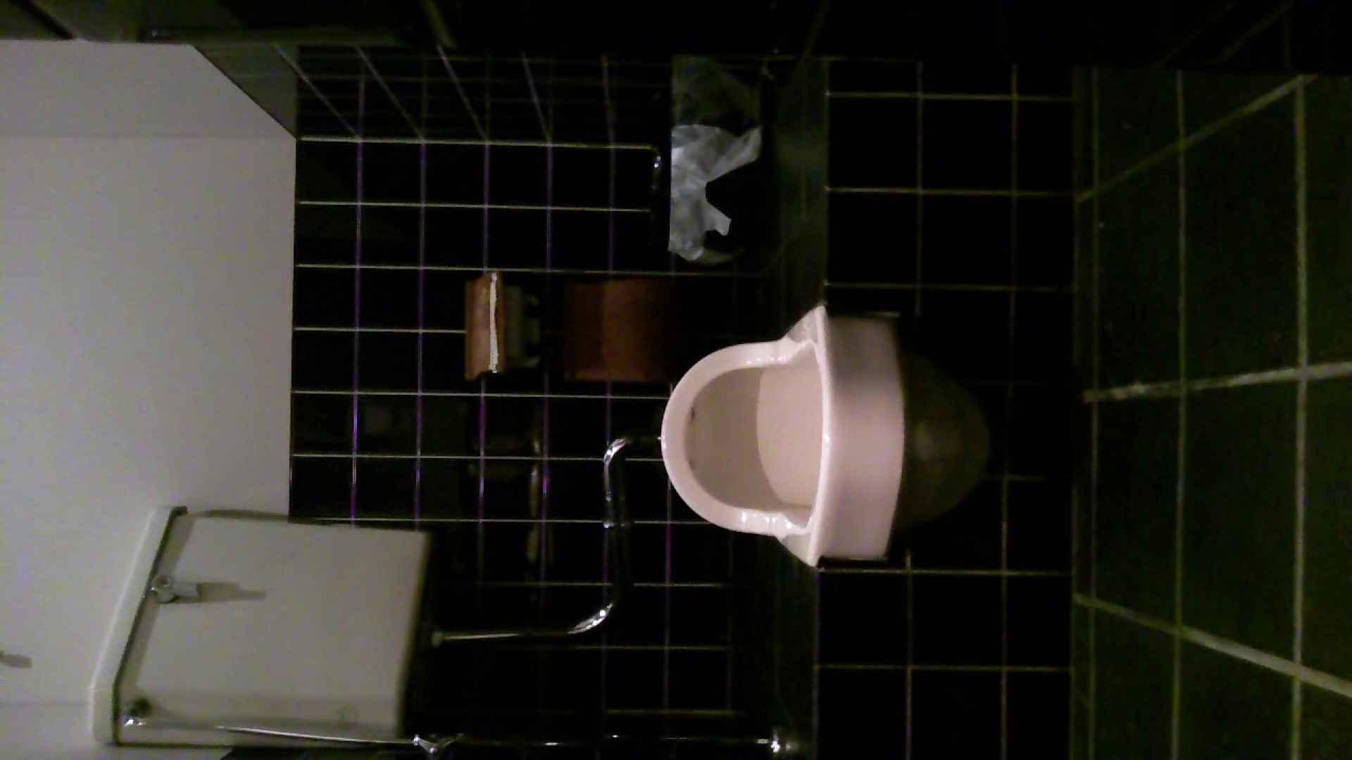 美女の集まる飲み屋洗面所 vol.02 OLヌード天国 | 美女ヌード天国  88PIX 65