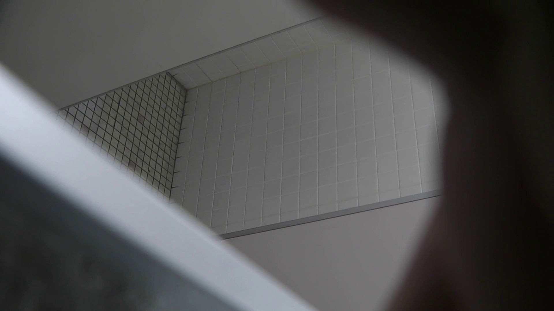セックスアダルト動画 vol.28 命がけ潜伏洗面所! ∑(゚Д゚)アッ! ピープフォックス(盗撮狐)