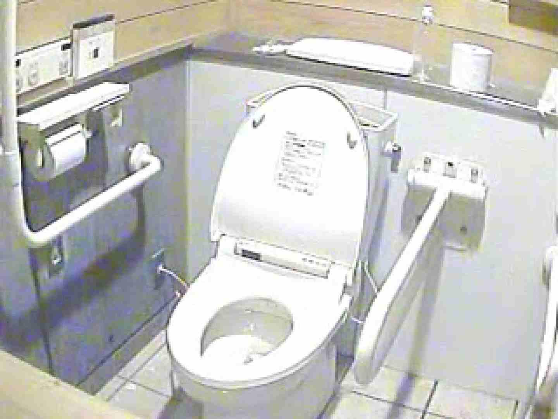 水着ギャル洋式洗面所 Vol.4 ギャル 隠し撮りオマンコ動画紹介 61PIX 47