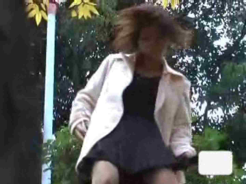 セックスアダルト動画 我慢が出来ない女達Vol.3 ピープフォックス(盗撮狐)
