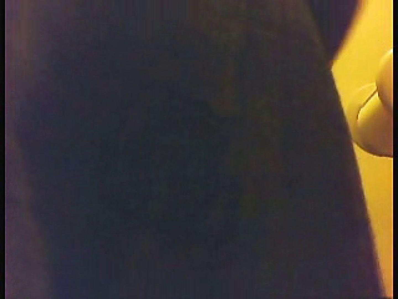 漏洩厳禁!!某王手保険会社のセールスレディーの洋式洗面所!!Vol.1 洗面所 性交動画流出 89PIX 59