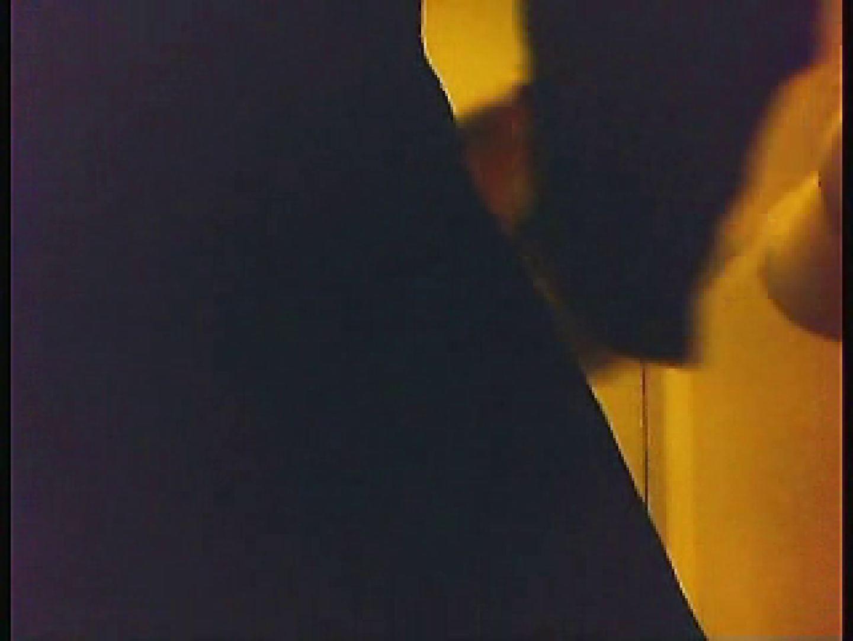 漏洩厳禁!!某王手保険会社のセールスレディーの洋式洗面所!!Vol.5 盗撮 性交動画流出 67PIX 14