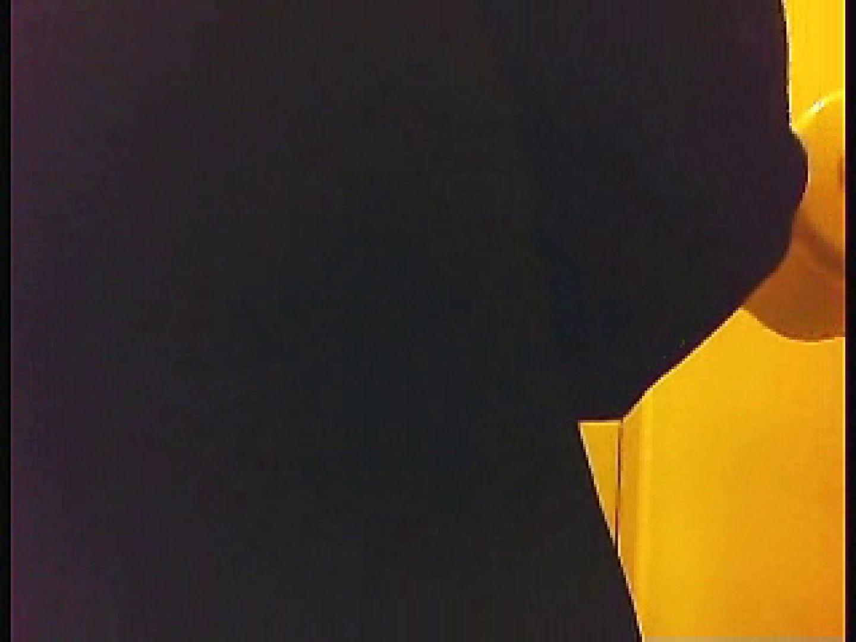 漏洩厳禁!!某王手保険会社のセールスレディーの洋式洗面所!!Vol.5 盗撮 性交動画流出 67PIX 26