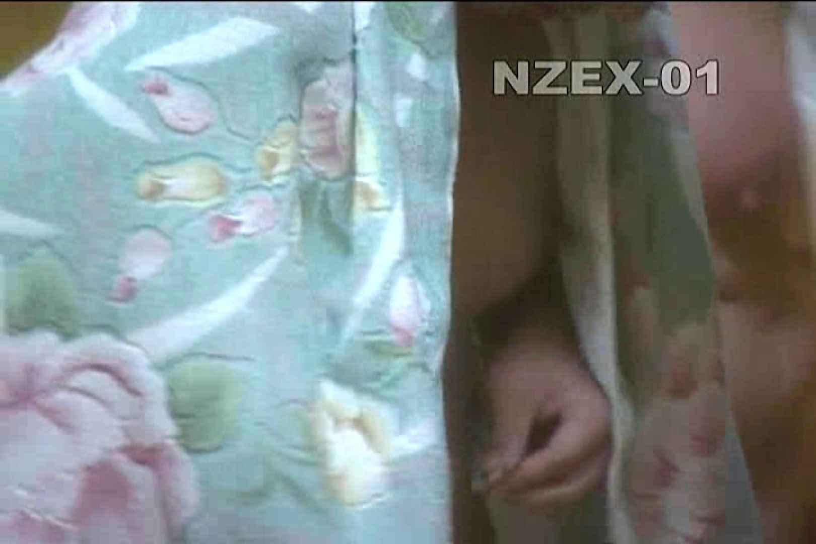覗き穴 nzex-01_01 覗き  90PIX 35