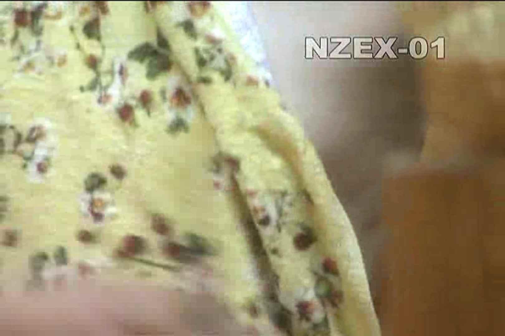 覗き穴 nzex-01_01 覗き  90PIX 65