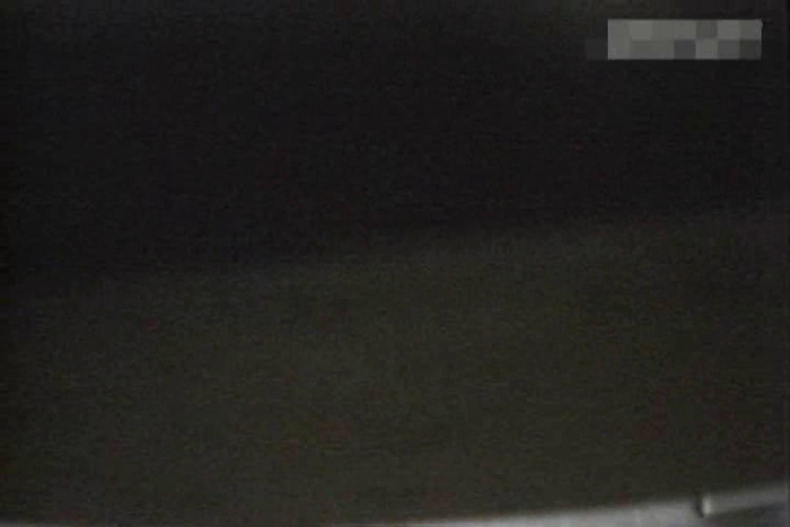 個室狂いのマニア映像Vol.2 OLヌード天国  77PIX 24