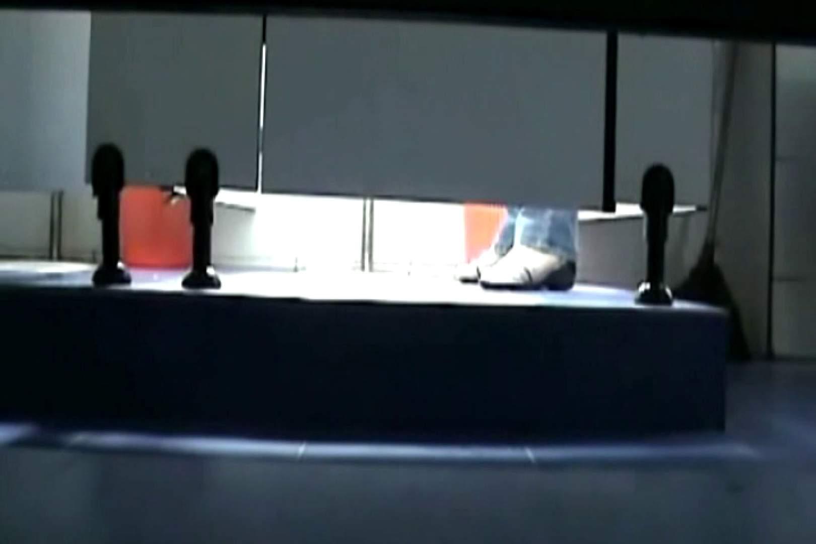 ぼっとん洗面所スペシャルVol.11 OLヌード天国   洗面所  78PIX 37