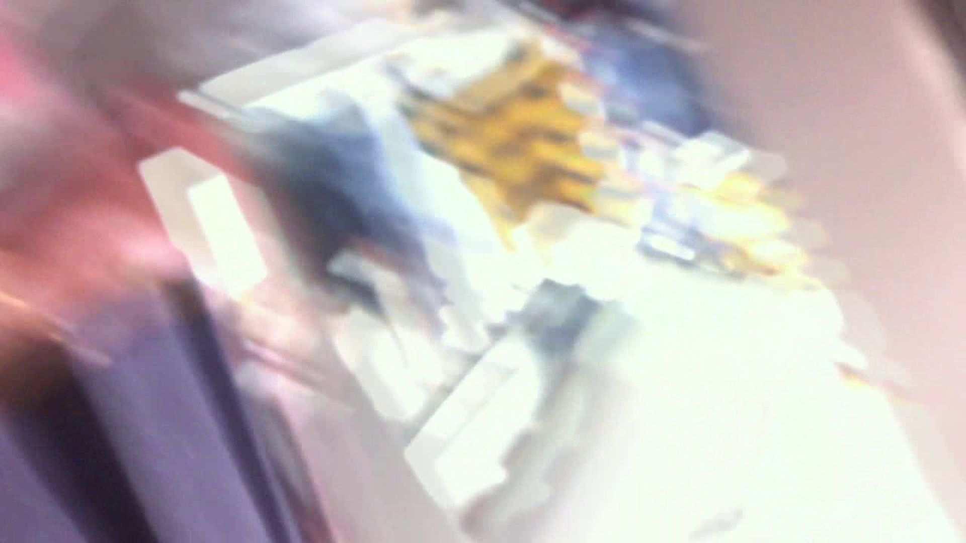 フルHD ショップ店員千人斬り! 大画面ノーカット完全版 vol.58 高画質 覗きおまんこ画像 69PIX 48