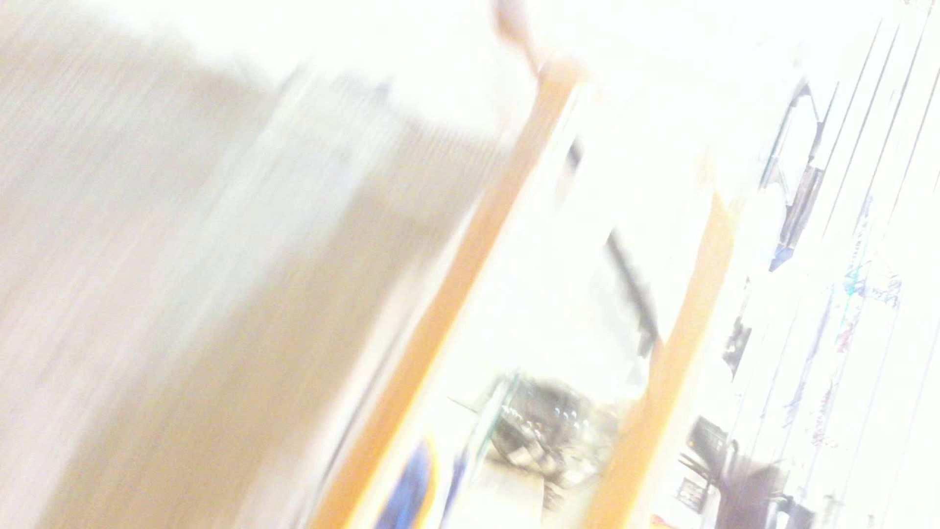 フルHD ショップ店員千人斬り! 大画面ノーカット完全版 vol.70 胸チラ ワレメ無修正動画無料 91PIX 24